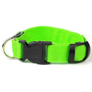 Vsepropejska Small svítící obojek pro psy | 19 - 38 cm Barva: Zelená