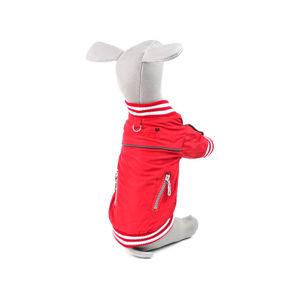 Vsepropejska Springy podzimní bunda pro psa Barva: Červená, Délka zad psa: 27 cm, Obvod hrudníku: 42 - 44 cm